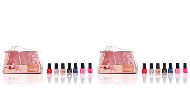 The Color Workshop NAIL KIT CASE # silver 10 pz